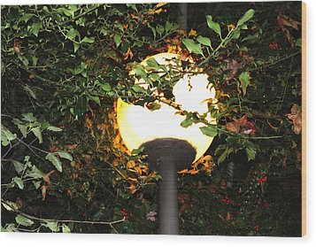 Streetlight Wood Print
