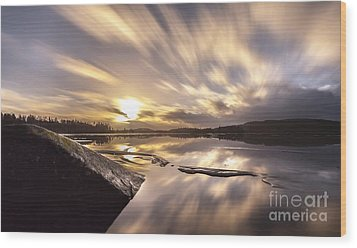 Wood Print featuring the photograph Strength In The Storm by Rose-Maries Pictures
