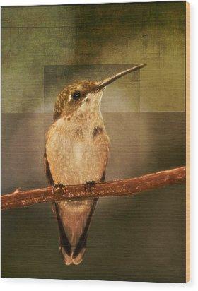 Strike A Hummingbird Pose Wood Print