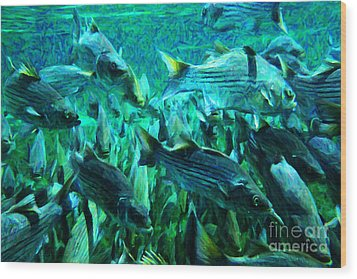 Striped Bass - Painterly V1 Wood Print by Wingsdomain Art and Photography