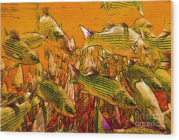 Striped Bass Wood Print by Wingsdomain Art and Photography