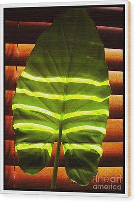 Stripes Of Light Wood Print by Nina Ficur Feenan