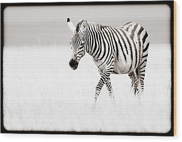 Stripes On The Move Wood Print by Mike Gaudaur