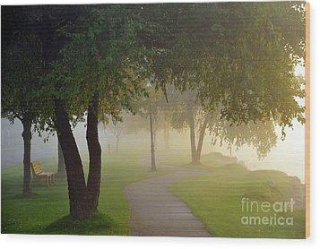 Stroll In The Fog Wood Print by Terri Gostola