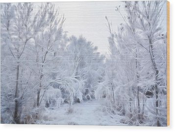 Stroll Through A Winter Wonderland Wood Print by Diane Alexander