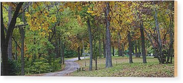 Stroll Through The Park Wood Print by Bruce Bley