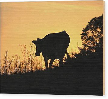 Wood Print featuring the photograph Strolling Into The Sunset by Penny Meyers