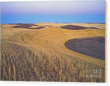 Stubble Wood Print by Don Hall
