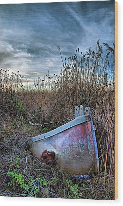 Stuck In The Marsh Wood Print by Michael  Ayers