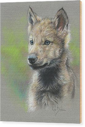 Study - Baby Wolf Wood Print