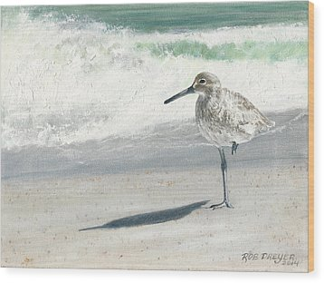 Study Of A Sandpiper Wood Print by Dreyer Wildlife Print Collections