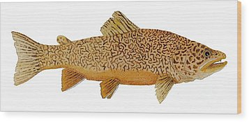 Study Of A Tiger Trout Wood Print