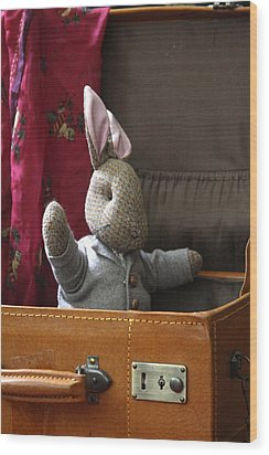 Stuffed Bunny In A Suitcase Wood Print