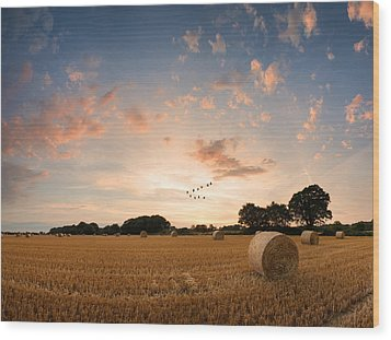 Stunning Summer Landscape Of Hay Bales In Field At Sunset Digital Painting Wood Print by Matthew Gibson