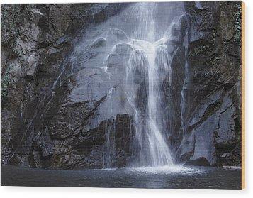 Sturtevant Falls Wood Print by Viktor Savchenko