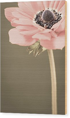 Subdued Anemone Wood Print by Caitlyn  Grasso