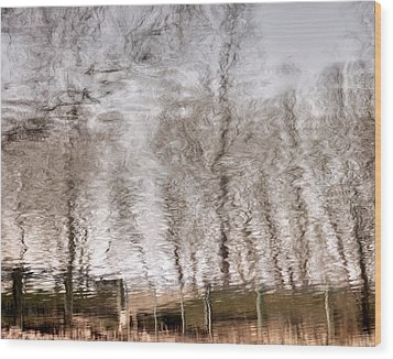 Subdued Reflection Wood Print by Steven Milner