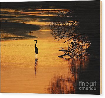 Sublime Silhouette Wood Print by Al Powell Photography USA
