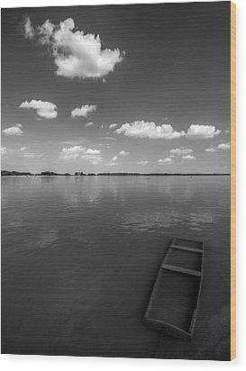 Submerged Wood Print by Davorin Mance