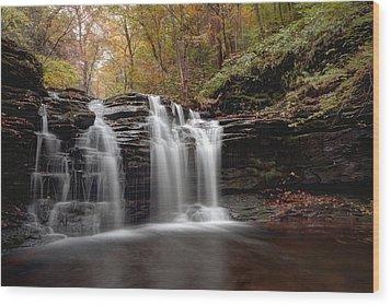 Subtle Fall Hues At Wyandot Falls Wood Print