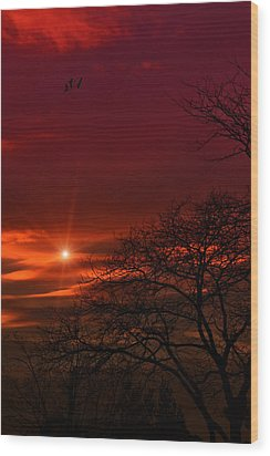 Suburban Skies Wood Print by Tom York Images