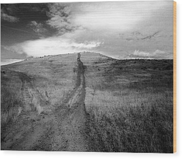 Wood Print featuring the photograph Succer Creek by Tarey Potter