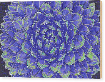 Succulent - Blue Wood Print by Jane Schnetlage