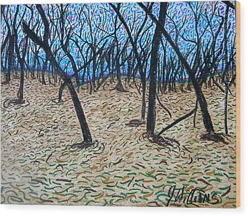 Sully's Hill Wood Print by Josh  Williams