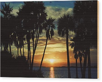 Wood Print featuring the photograph Sultry Sunset by Janie Johnson