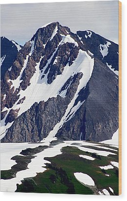 Summer At The Top Of Whistler Wood Print by Christine Burdine