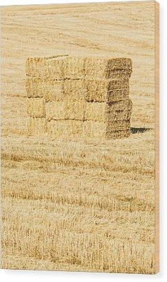 Summer Bales Wood Print by Clint Brewer
