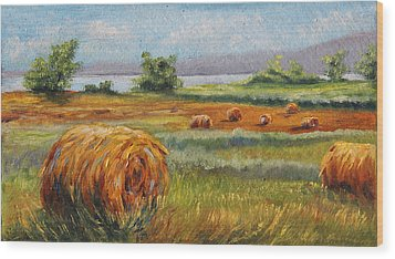 Summer Bales Wood Print by Meaghan Troup