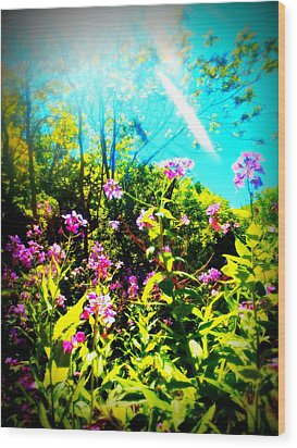 Summer Beauty Wood Print