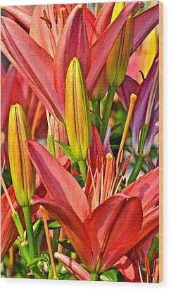 Summer Bouquet Wood Print by Frozen in Time Fine Art Photography
