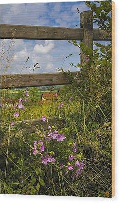 Summer Breeze Wood Print by Debra and Dave Vanderlaan