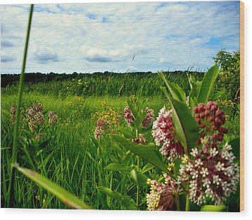 Wood Print featuring the photograph Summer Breeze by Zafer Gurel