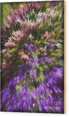 Wood Print featuring the photograph Summer Carpet by Liz  Alderdice