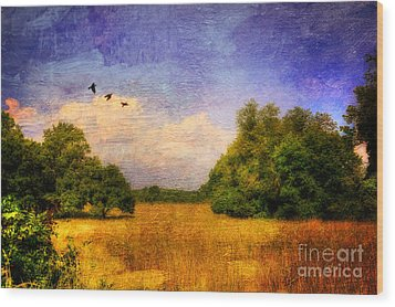 Summer Country Landscape Wood Print by Lois Bryan