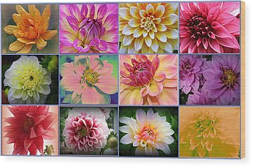 Summer Time Dahlias Wood Print by Dora Sofia Caputo Photographic Art and Design