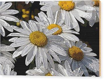 Summer Daisies Wood Print