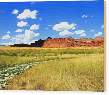 Wood Print featuring the photograph Summer Day On Ranch Land by Antonia Citrino