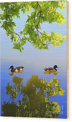 Summer Day On The Lake Wood Print by Mariola Bitner