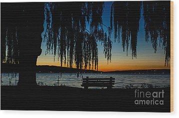 Summer Evening At Stewart Park Wood Print