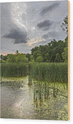 Summer Evening Clouds Wood Print by Edward Peterson