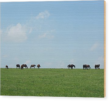 Summer Grazing Wood Print by Roger Potts