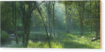Summer Has Began Wood Print