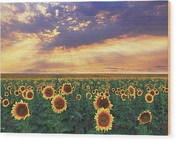 Wood Print featuring the photograph Summer Haze by Kadek Susanto