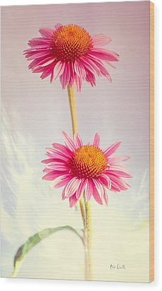 Summer Impressions Cone Flowers Wood Print by Bob Orsillo
