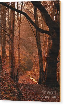 Summer In Sots Hole Wood Print