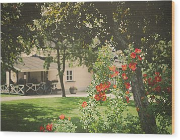 Wood Print featuring the photograph Summer In The Park by Ari Salmela